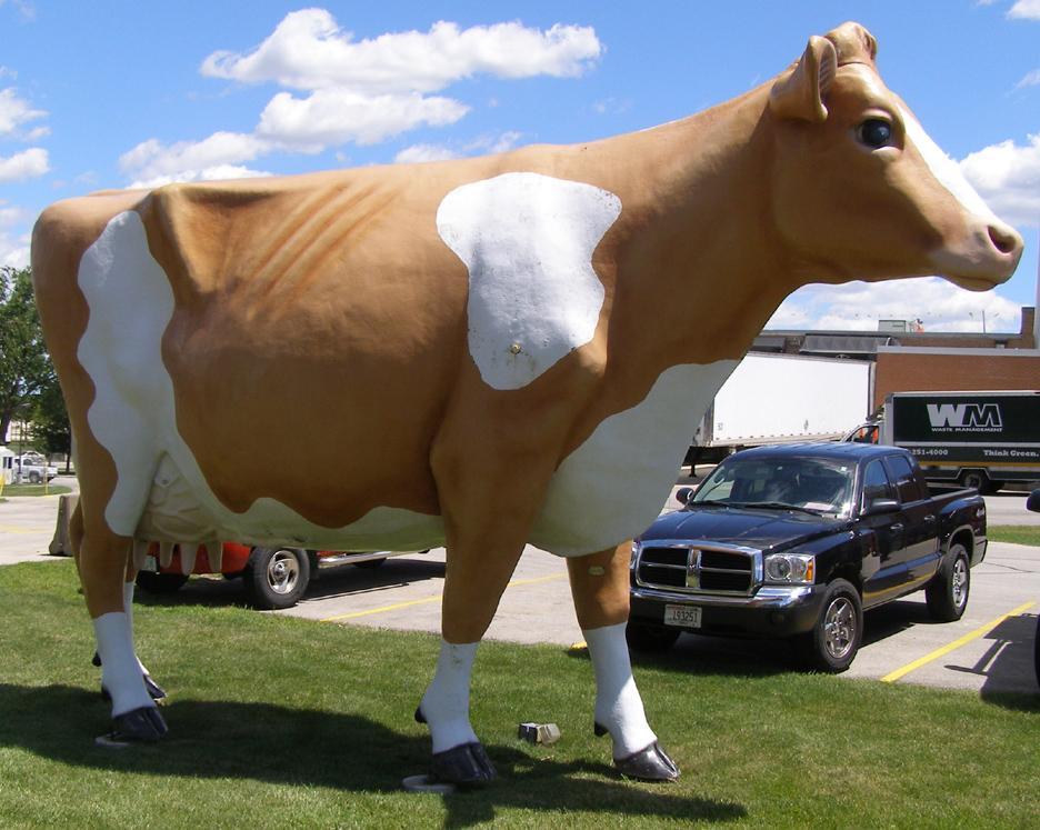 Left Leg Forward Cows Roadsidearchitecture Com
