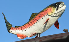 Fish statues for Morey s fish
