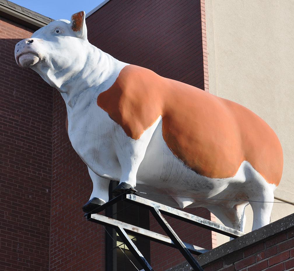 Bull Statues | RoadsideArchitecture.com