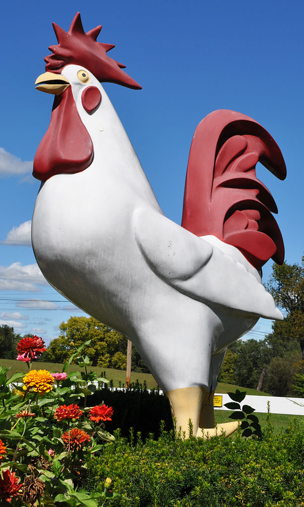 Chickens And Rooster Statues Roadsidearchitecture Com
